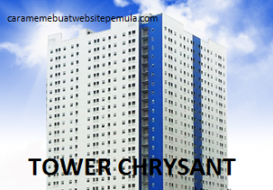 3. TOWER CHRYSANT