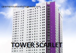 7. TOWER SCARLET