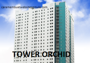 5. TOWER ORCHID